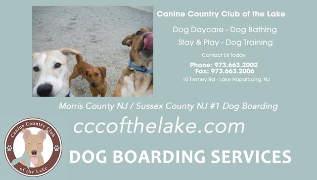 Dog Vacation Sitting Lake Hopatcong New Jersey