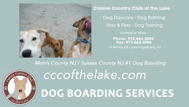 Dog Boarding Sitters Lake Hopatcong NJ